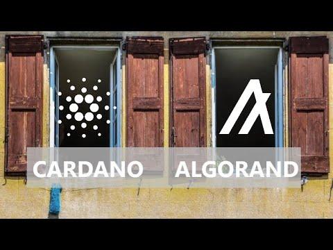Cardano Interoperability; Algorand Readies Smart Contracts; Metamask Enterprise Changes