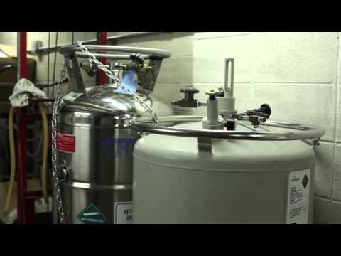 Diagram Of Nitrogen Filling And Maintenance Of Liquid Nitrogen Tanks Youtube