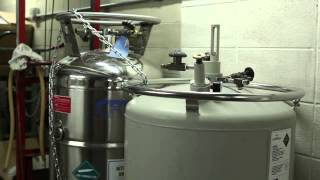 Filling And Maintenance Liquid Nitrogen Tanks