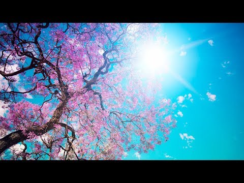 Romantic Relaxing Music for Stress Relief. Soothing Music for meditation, massage, music therapy