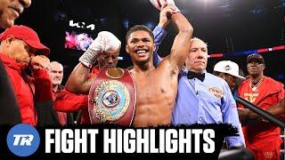 Shakur Stevenson Best Performance of Young Career, Finishing Herring by TKO to Win Belt | HIGHLIGHT