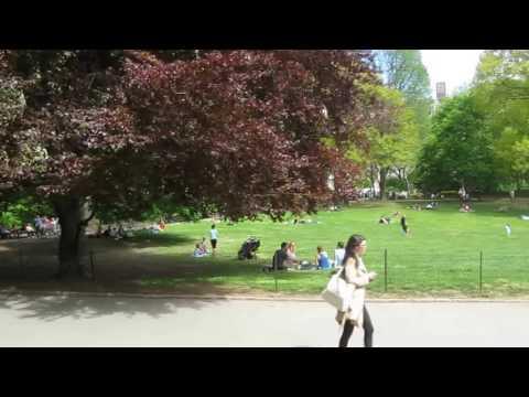 New York City Central Park - Manhattan Central Park New York City USA