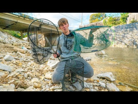 Creek Fish Trapping Battle! Which Traps Catches the Most Fish?