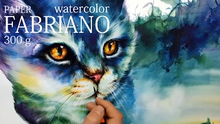 CAT DRAWING,how to watercolor,watercolor painting .cat illustration