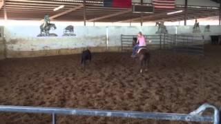 Ruby- Jared Lesh cowhorses