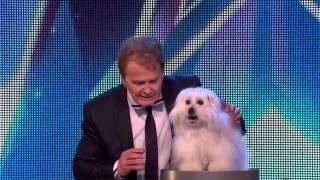 Video Britain's Got Talent Golden Buzzer 2017 download MP3, 3GP, MP4, WEBM, AVI, FLV April 2018