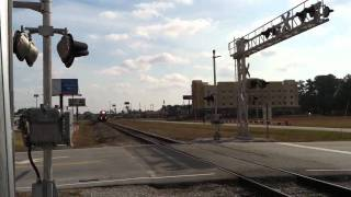 Train on the South Carolina Central Railroad (Nov 21, 2011)