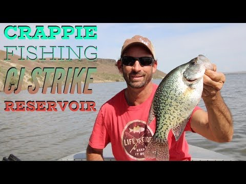 Crappie Fishing CJ Strike (Crappie Ceviche Prepared On The Boat) Idaho Surf And Turf