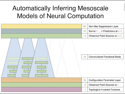Inferring Mesoscale Models of Neural Computation