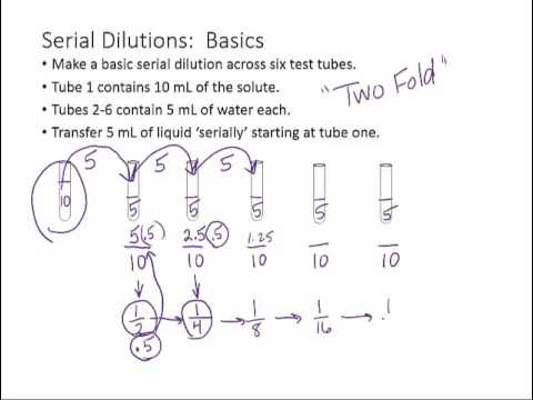 Serial Dilutions Lesson