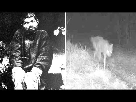 4 Most Mysterious Werewolf Cases That Can't Be Explained