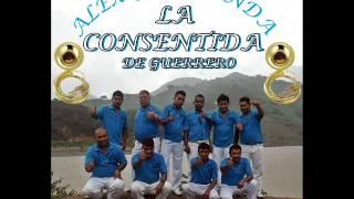 Alex y Su Banda La Consentida De Guerrero - Mar Y Cielo