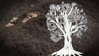 TEJIDO ANDINO Video acerca de los tejidos andinos, creado por Mariana Tschudi