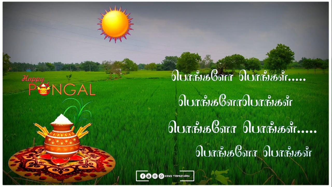 Pongal whatsapp status Tamil 2020//Pongalo Pongal song ...