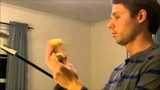 Joe Murfin-Fun with 2 Egg Shakers