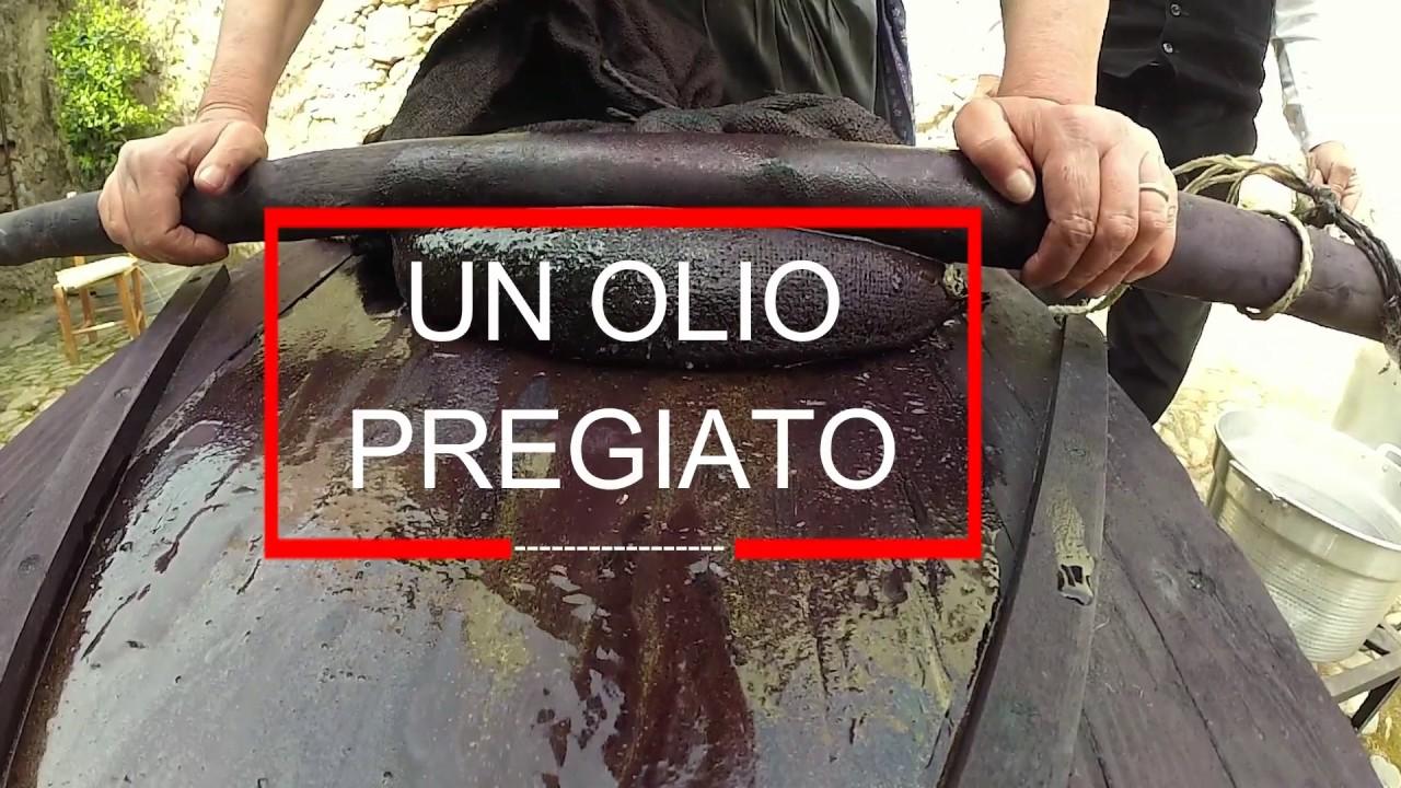 Spremitura Tradizionale Dell Olio Di Lentisco In Sardegna Come Si Fa