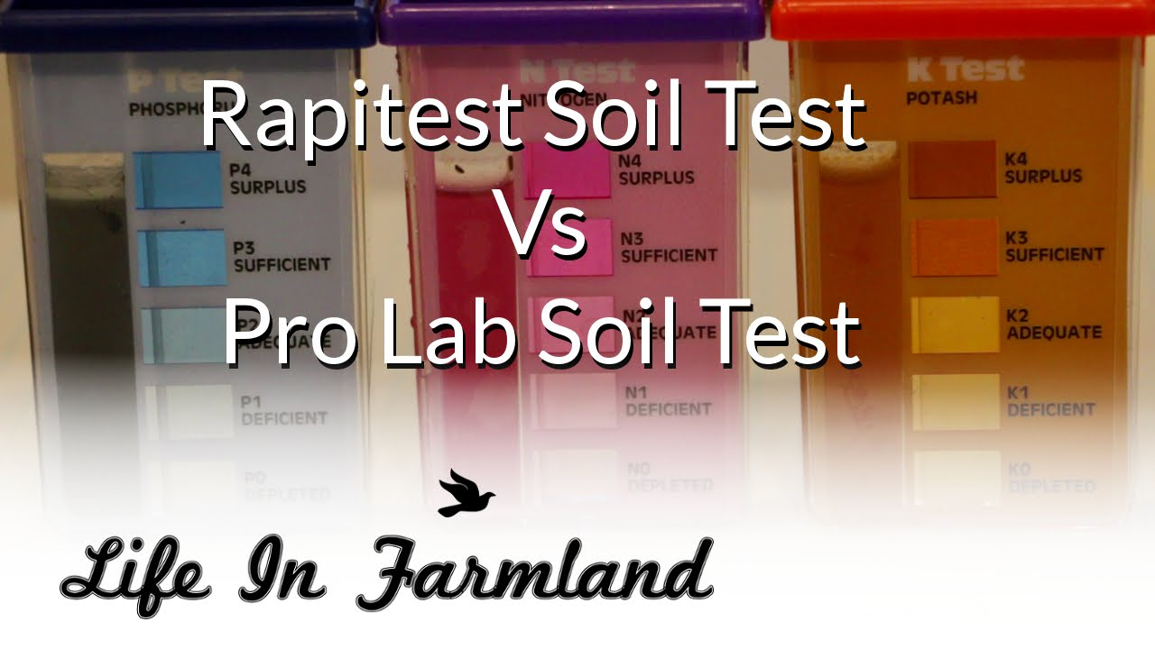 Comparing Store And Lab Soil Sample Kits [Testing Garden Soil]