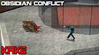 Obsidian Conflict - Kake