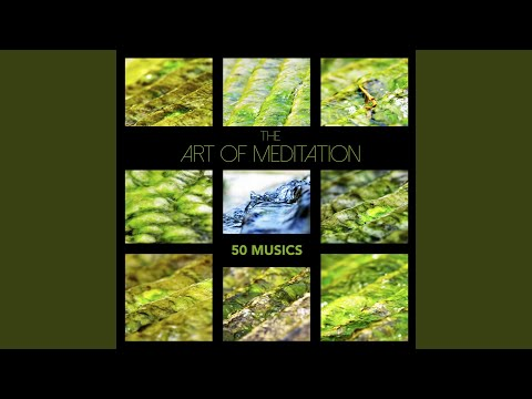 The Art of Meditation: 50 Musics - Zen Garden Meditation Music & Soothing Sleep Sounds for Relaxation, Mindfulness Therapy and Healing Sleep