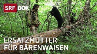 Reno Sommerhalder – Der Bärenmann in Sibirien | Leben unter Bären | Doku | SRF DOK