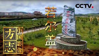 《中国影像方志》 第577集 四川若尔盖篇| CCTV科教