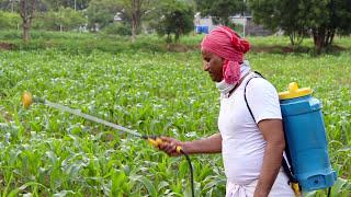 Baixar Shashwat Yogik Kheti - Promo 1 Prakruti ki Pukar - Brahma Kumaris - Official Teaser Trailer