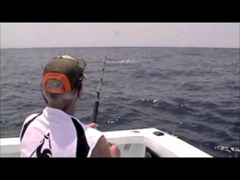Super Sexy Costa Rica Fishing Video!!