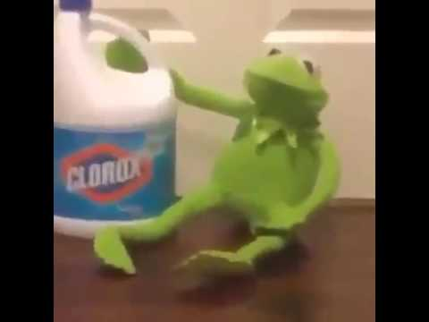 Jacob Sartorius || Kermit || Bleach - YouTubeKermit Drinking Bleach