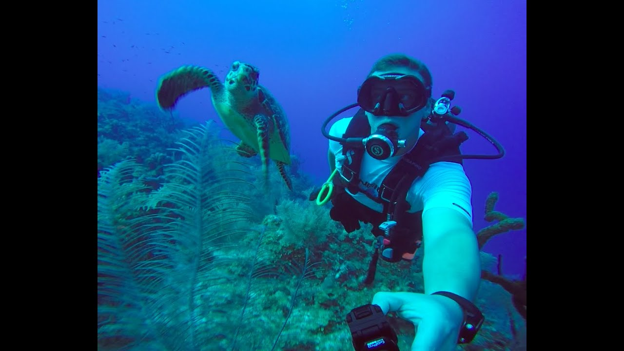 Scuba Diving Scubadiving