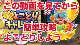 【ぷにぷに攻略】日ノ鳥 よこどりのコツ 勝てるパーティ 時空神 エンマ武道会 刻 thumbnail