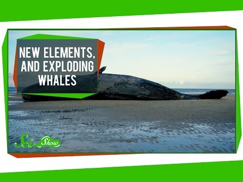 New Elements, and Exploding Whales