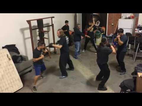 Wing Chun Mitt drills