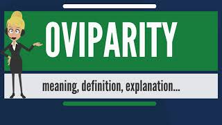 What is OVIPARITY? What does OVIPARITY mean? OVIPARITY meaning, definition & explanation