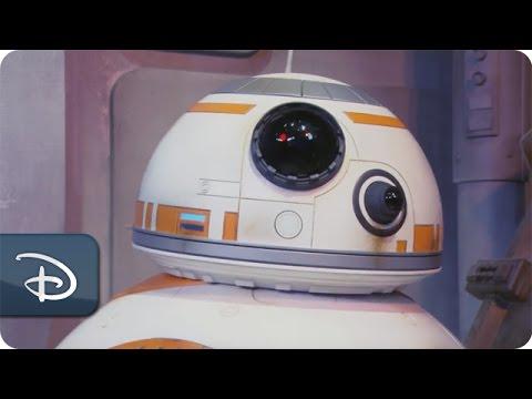 BB-8 Greets Guests at Disney's Hollywood Studios | Walt Disney World