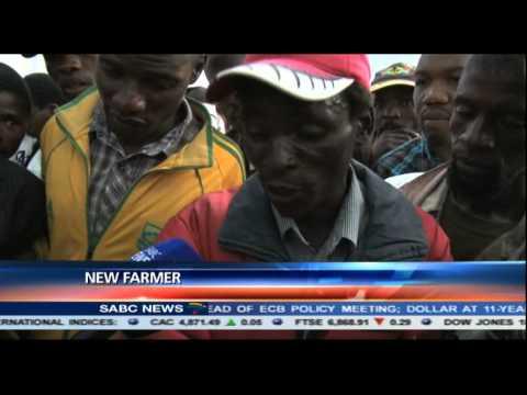 Zimbabwe's tobacco marketing season