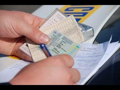 Новые водительские права для ЕС. Сколько стоят и как получить
