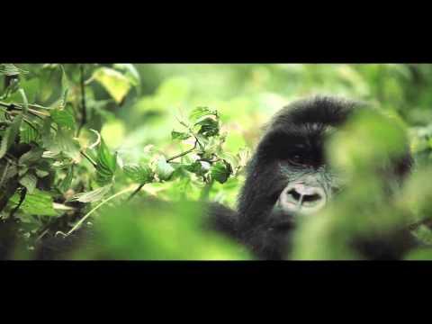 Deep Forest - Sweet Lullaby (Glender 2013 Mix)