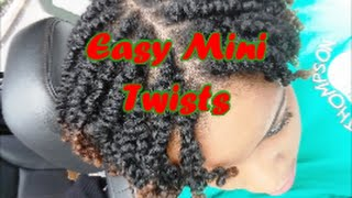 Natural Hair How To | End of Summer Mini Twist Protective Style