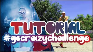 TUTORIAL Chris Brown Go Crazy (Dance Challenge ) #gocrazychallenge @lypebreezydancer