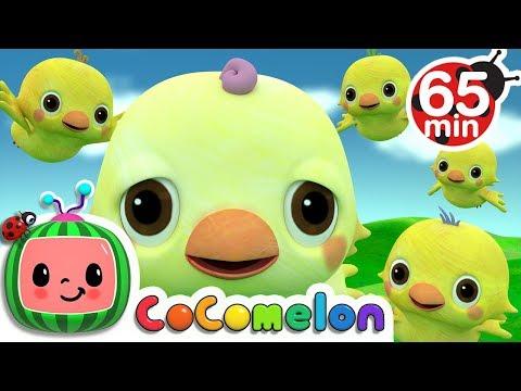 Five Little Birds 2 | + More Nursery Rhymes & Kids Songs - ABCkidTV