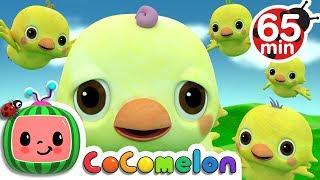 Five Little Birds 2 | +More Nursery Rhymes & Kids Songs - CoCoMelon