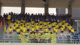 cfss的CFSS Athletic Meet 2019 - Yellow House Cheering相片
