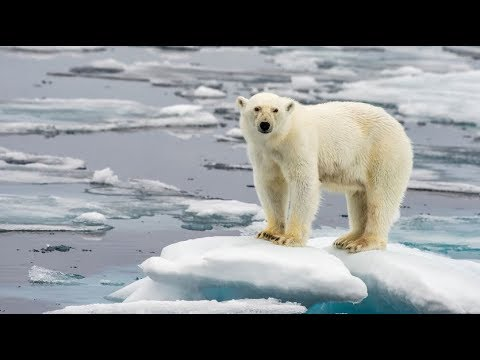 """The """"Three Percent"""" of Science That Denies Climate Change is Flawed"""