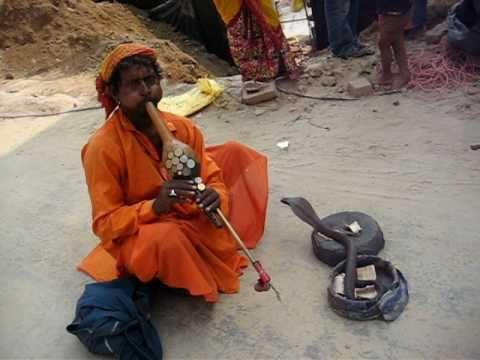 "wake up call by ""Snake Charmer in Gurgaon"" PART - II"