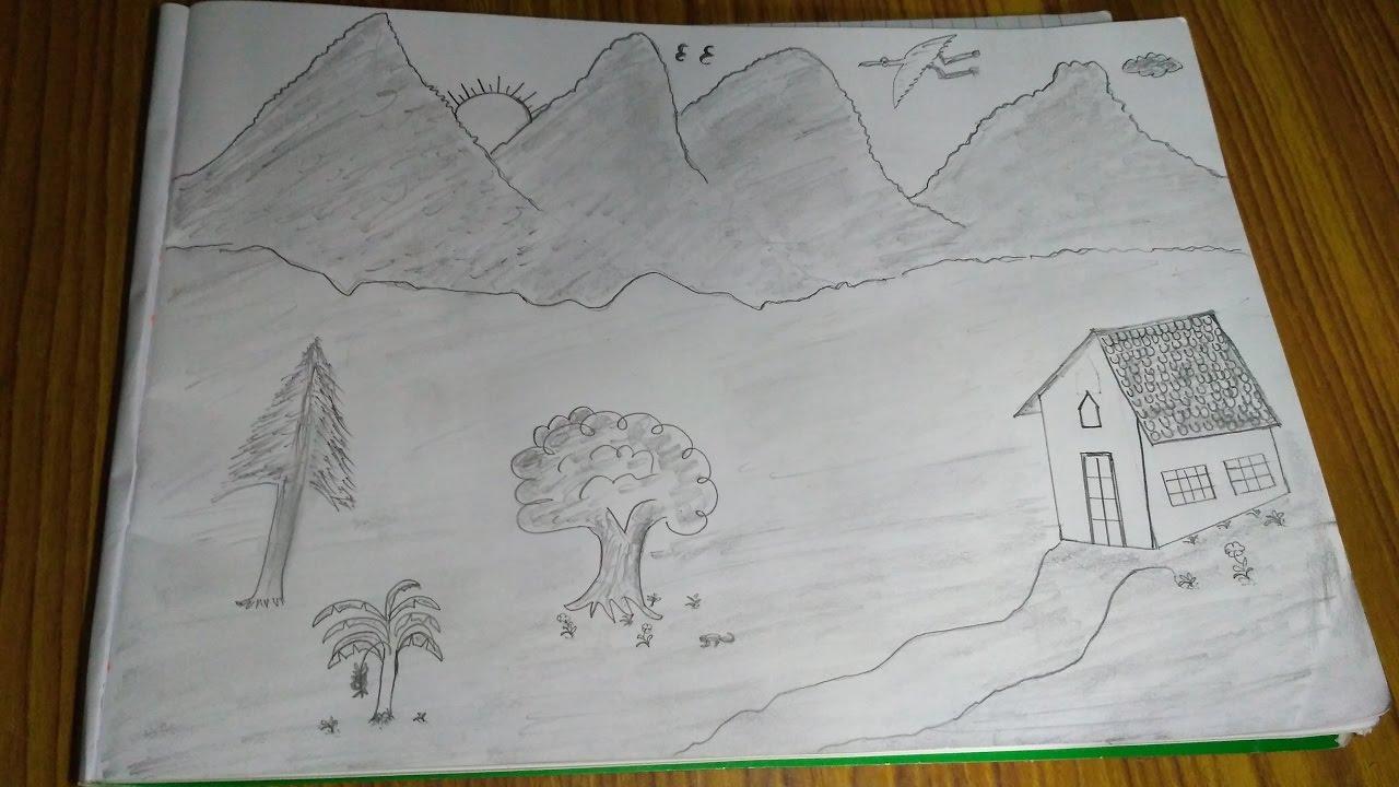 Lern simple nature drawing