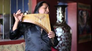 Download Hallelujah on Panflute | Aleluya by Edgar Muenala | (Official Music Video) Mp3 and Videos