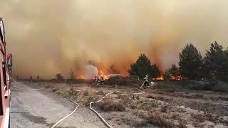 Ogromny pożar wrzosowisk oraz lasu na poligonie w Świętoszowie.