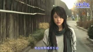 SJ 藝聲 - 非你不可(MV)《灰姑娘的姊姊》OST 繁中字幕