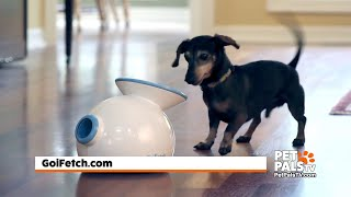 Go Fetch makes ball throwing a breeze