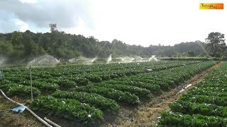 Feeding A Nation Is A Documentary about Were Our Food Comes From. T...